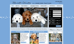 Adorable Doodles Goldendoodle Puppies in Michigan